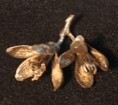 Azahar de Oro