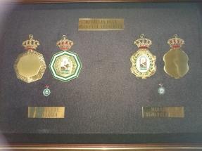 medallas institucionales